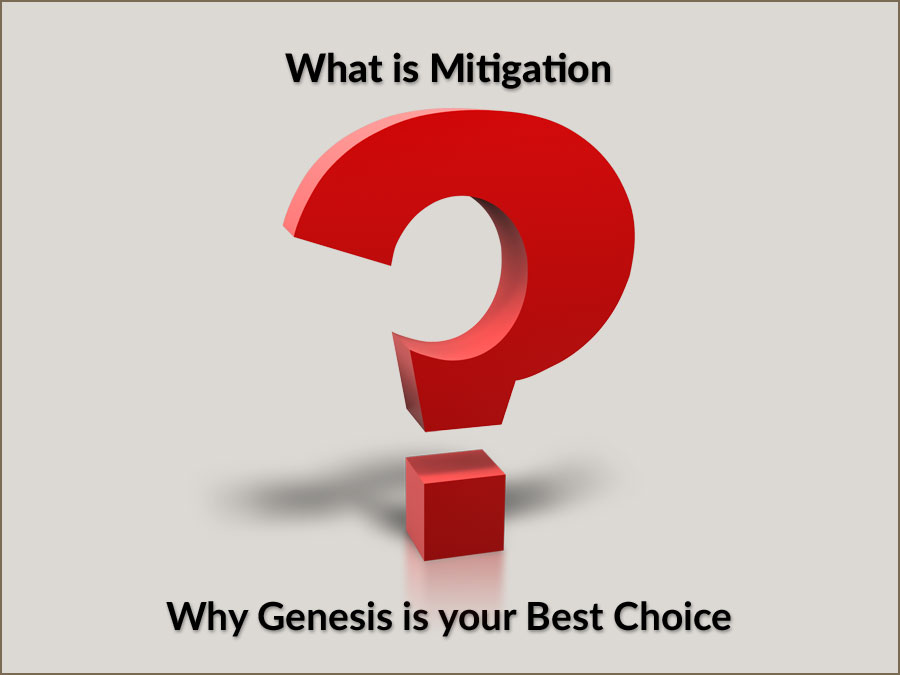 What is Mitigation all about?